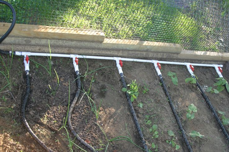 Soaker hose manifold placed in garden murray pinterest - Diy drip irrigation systems ...