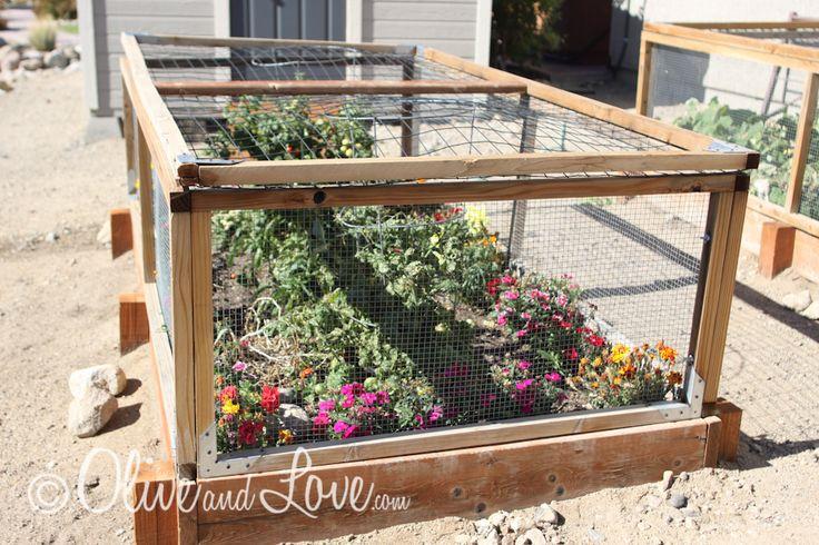 Deer Proof Your Vegetable Garden By Proofing Plans