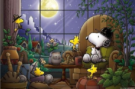 Image result for  Snoopy at night