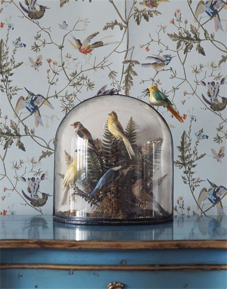 cole son hummingbirds wallpaper wall inspiration