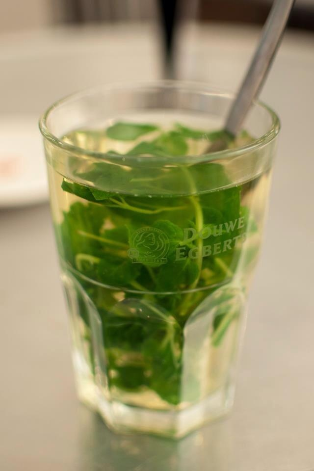 Fresh mint tea | Drinks and smoothes | Pinterest