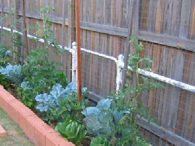 Vegetable garden along fence line things i like pinterest - Garden ideas along fence line ...
