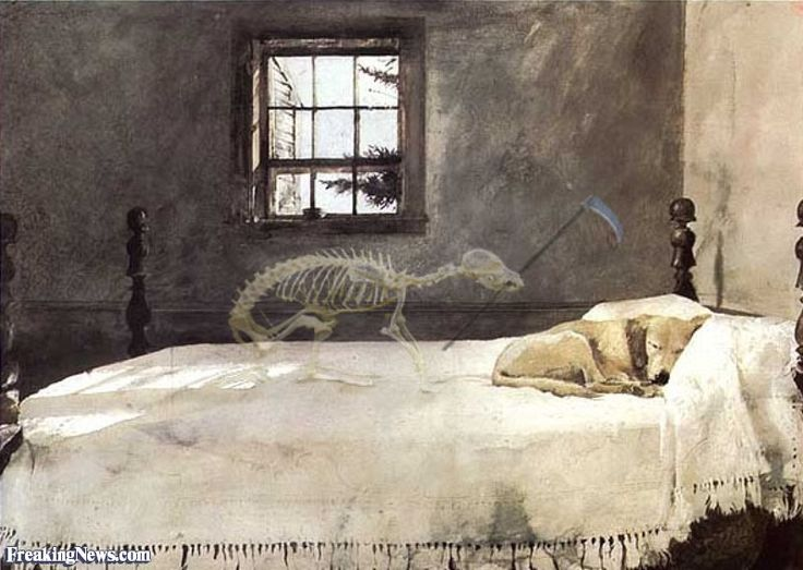 painting by andrew wyeth with a little addition grim reaper d