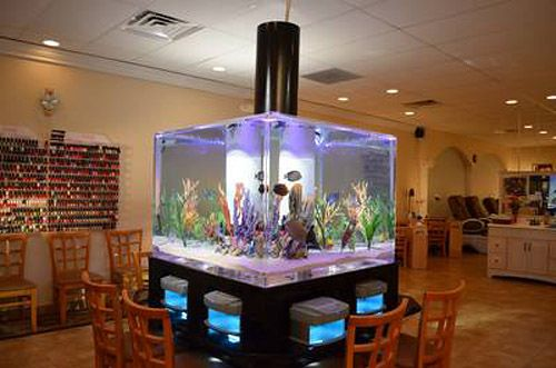 Bar fish tank fish tanks pinterest for Fish tank bar