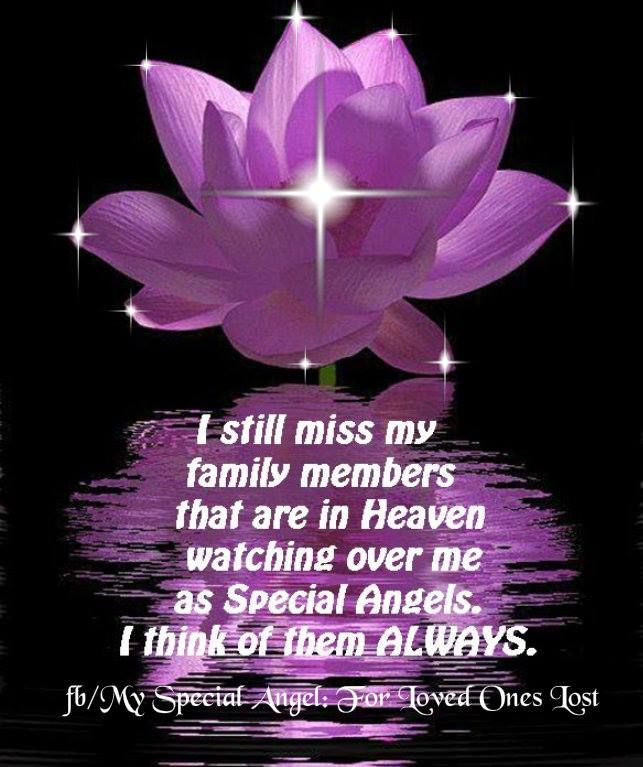 Missing A Family Member Quotes. QuotesGram