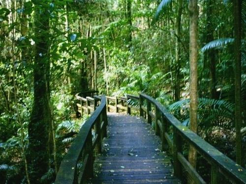 Mount Glorious Australia  city pictures gallery : Mt. Glorious, Queensland, Australia | Travel | Pinterest
