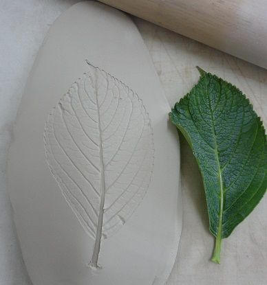 Leaf Impression in Clay