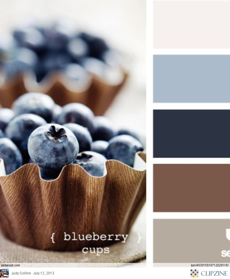 Blueberry cups dreaming of a beautiful home pinterest - Brown and blue paint combinations ...