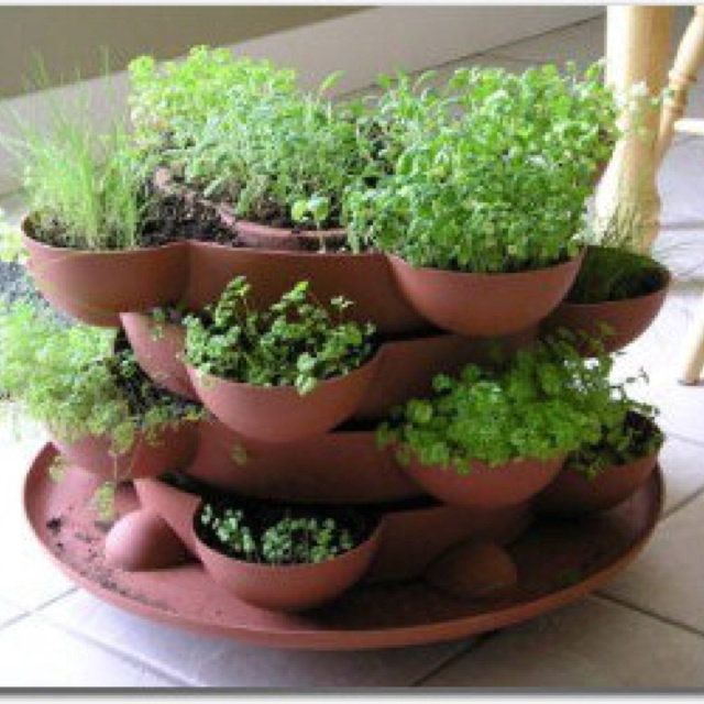indoor herb garden for your kitchen products i love
