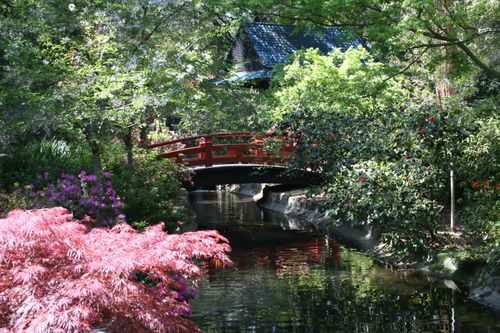 Descanso Gardens Cool Places To See Pinterest