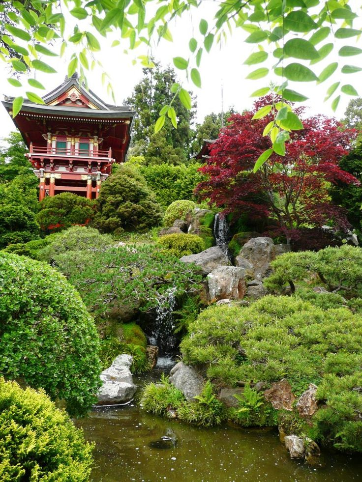 Japanese Tea Garden Click To See Full Size