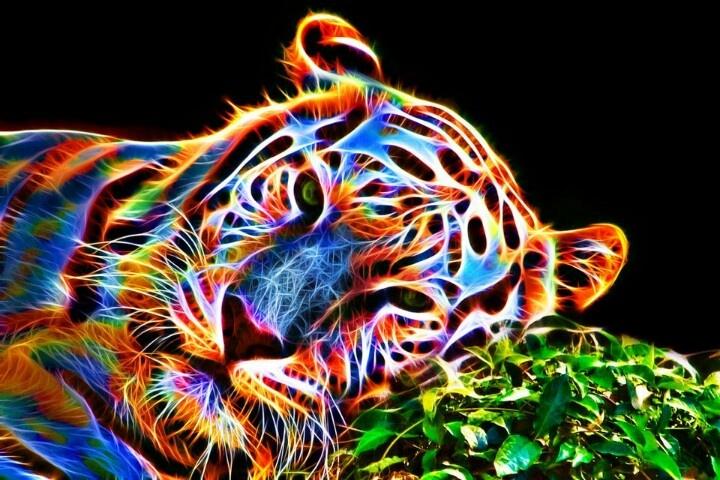 tiger fractal cats e - photo #3