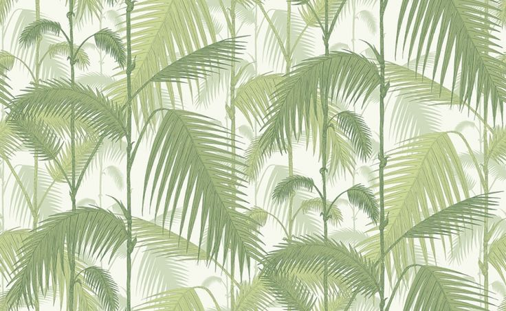 palm leaves wallpaper related - photo #34