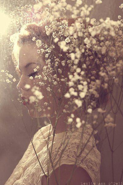 Behind flowers