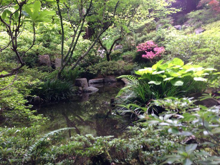 Portland Botanical Garden 2013 Jardins botaniques