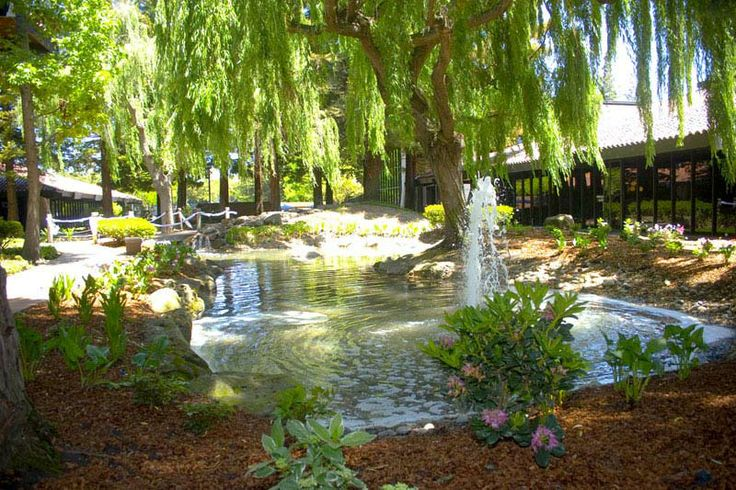 Pin by steve padis jewelry on bay area wedding venues for Garden pool wedding