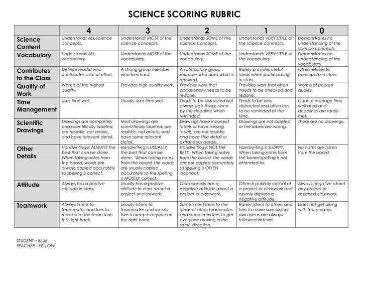 Science essay rubric examples
