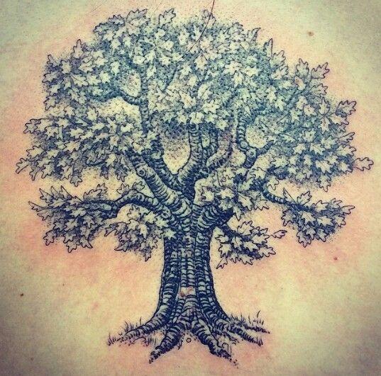 my new oak tree tattoo tattoo ideas pinterest