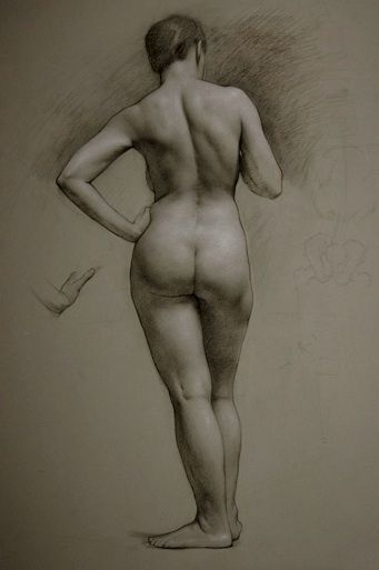 Figure Drawing Practice - Line of Action
