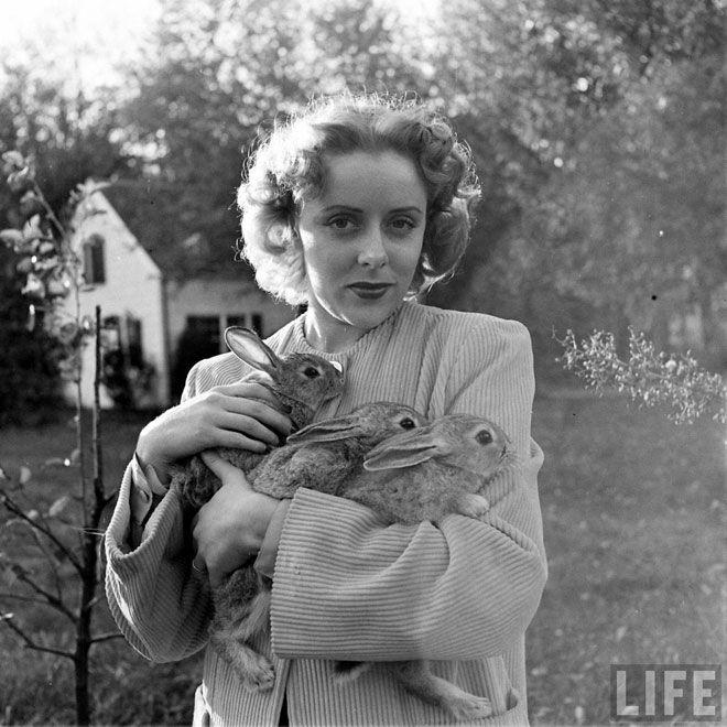 the life magazine archives #bunny #vintage #farm