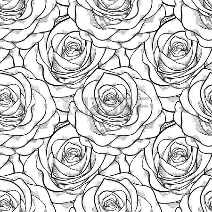 Contour Line Drawing Rose : Pin by shannon moran on wedding plans pinterest