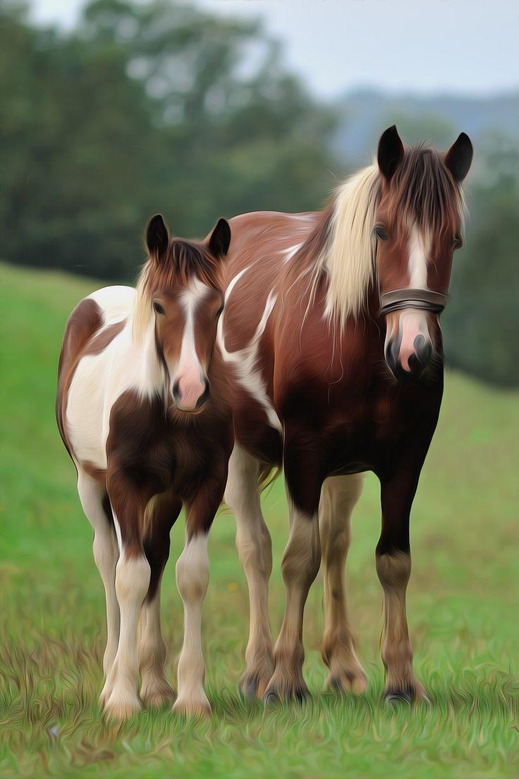 Paint baby horses