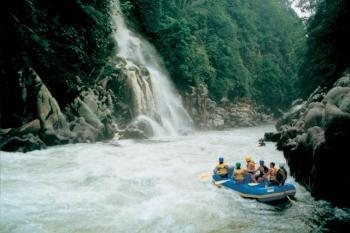 The Amazon - South America