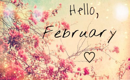 Hello February quotes quote february february quotes hello february february pictures