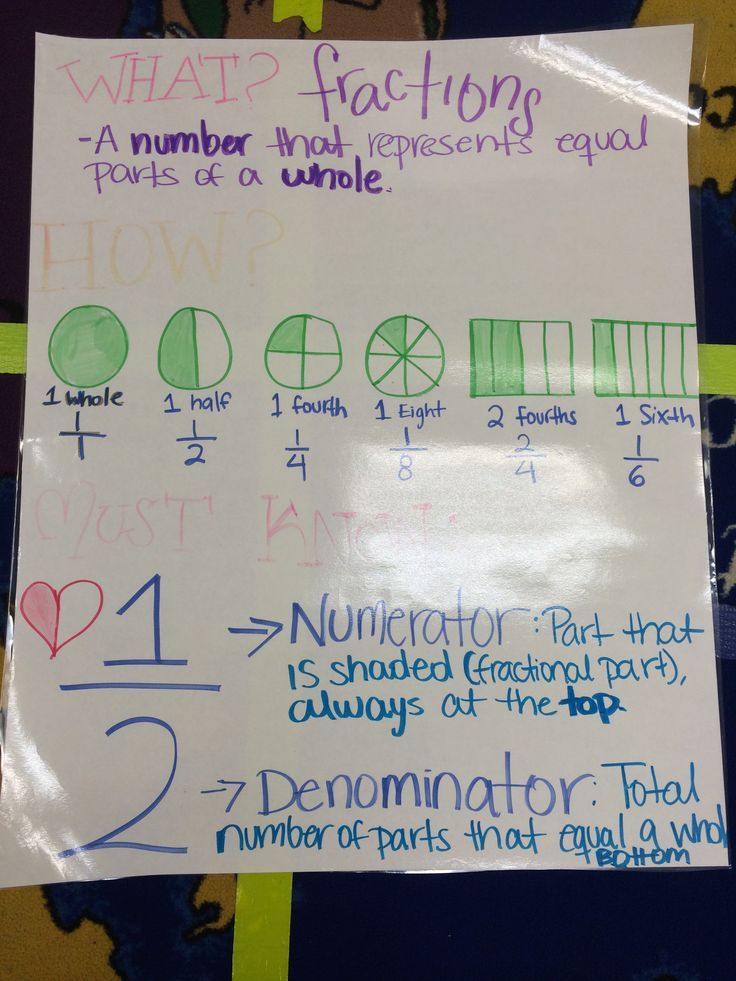 Fractions! | 2nd Math Graphic Organizers | Pinterest