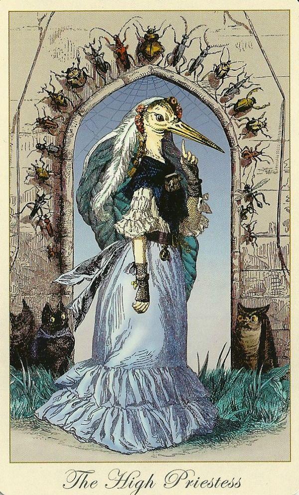 The Priestess | Tarot Cards | Pinterest - 204.1KB