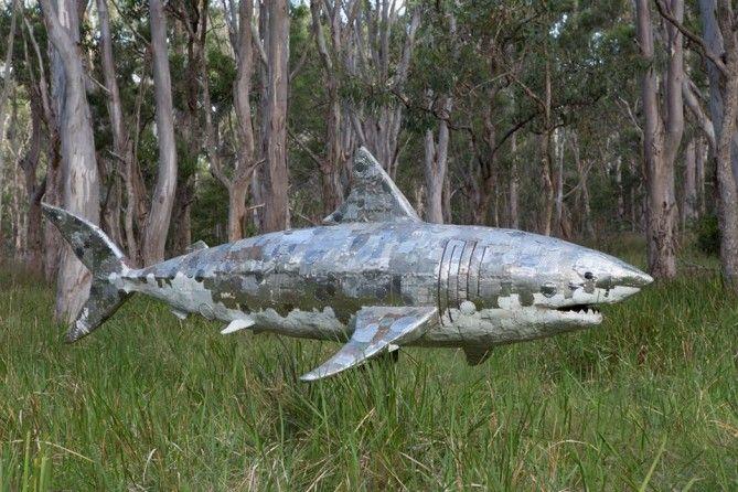 Land Shark ART And DESIGN Pinterest