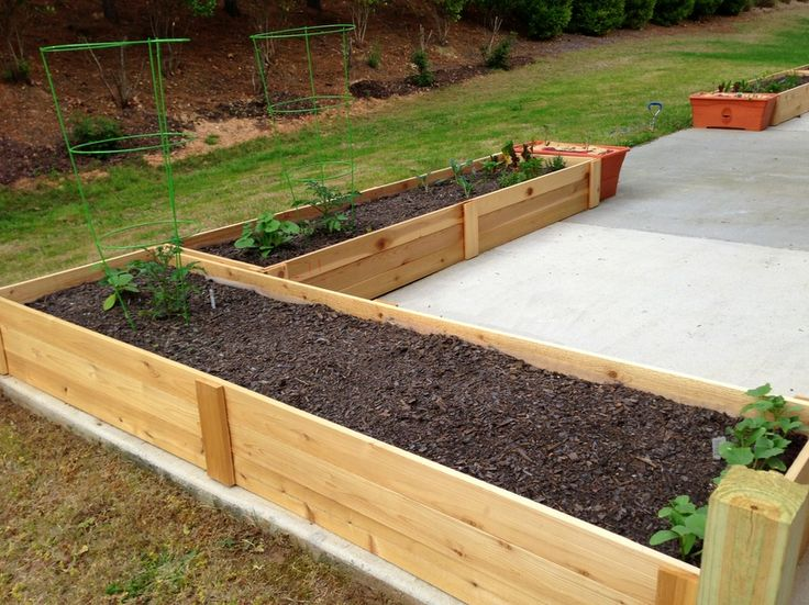 Michael Nolans raised bed patio gardens Garden Pinterest