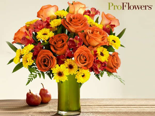 proflowers holiday