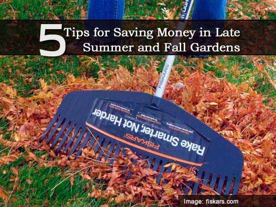 tips for saving money in late summer and fall gardens