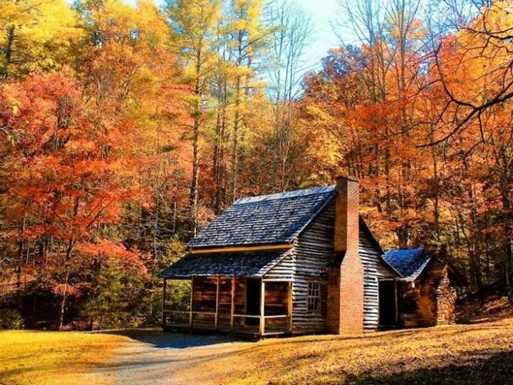 Log Cabin With Autumn Background Primitive Historic