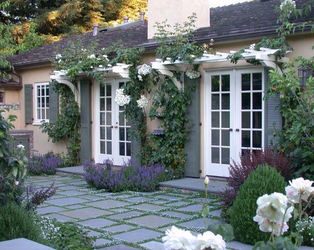 Pretty over window door pergola studio pinterest for Window trellis design