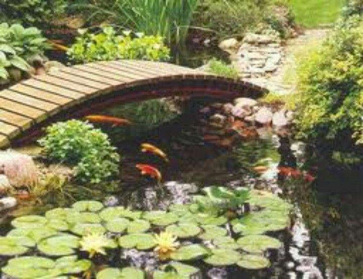 Koi pond with bridge ponds pinterest for Fish pond bridges