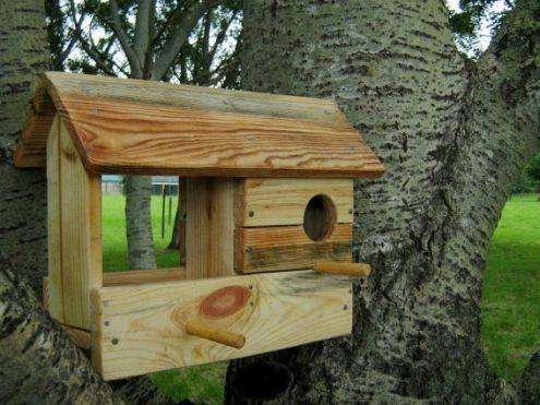 Casette in legno per uccelli fai da te