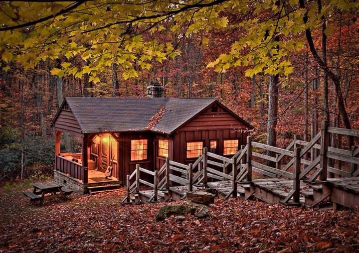 Lovely cabin in the woods landscapes old buildings pinterest - The recreational vehicle turned cabin in the woods ...