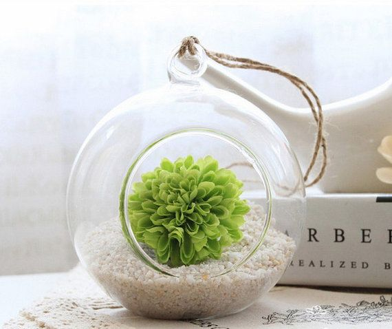FREE SHIPPING Glass Hanging Planter Air Plant Terrarium Container Vase ...