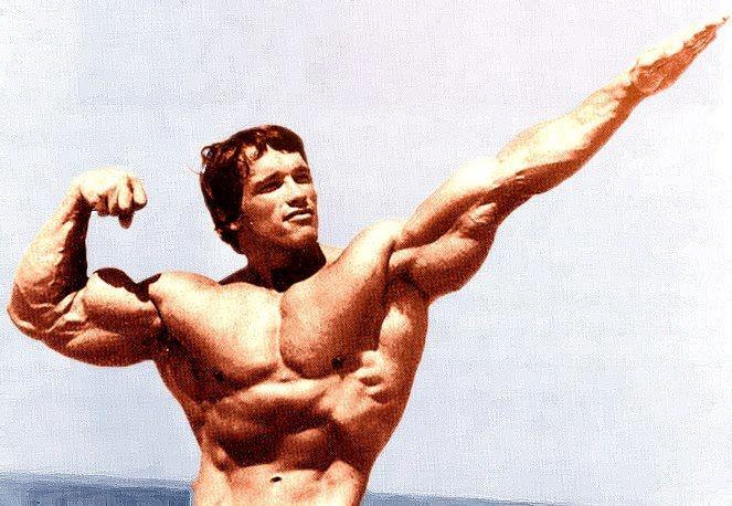 The gallery for --> Arnold Schwarzenegger