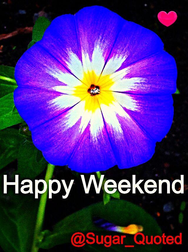 Happy Weekend Quotes Pinterest. QuotesGram