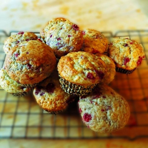 Raspberry Yogurt Muffin Recipe With Substitutions