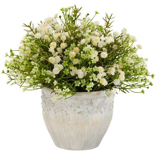 indoor flowers at walmart
