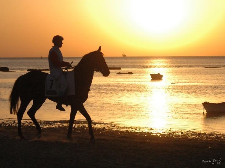 Carreras de caballos en Sanlucar de Barrameda