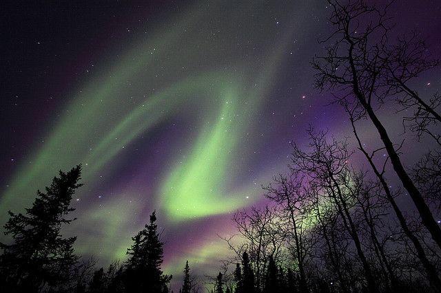 purple aurora borealis wallpapers x - photo #35