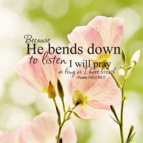 116 2: Psalms 116:2