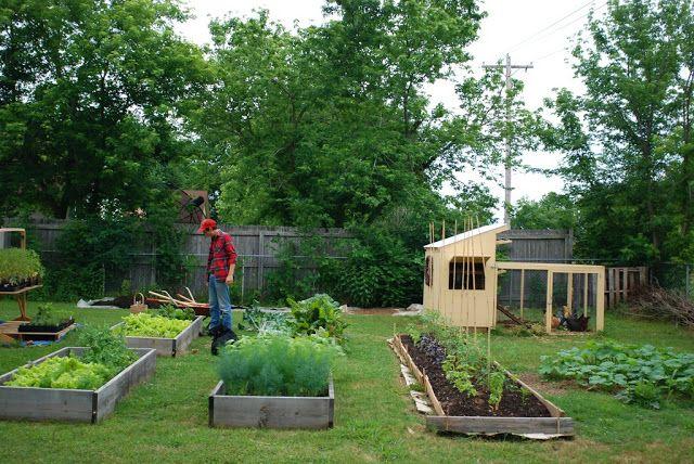 Backyard farm  Homesteadin  Pinterest