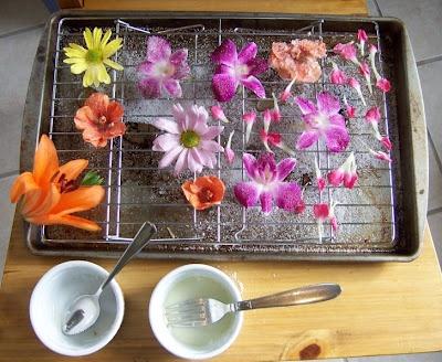 Passion Fruit & Mangos: SHF #30: Orange Blossom Cake with Candied ...