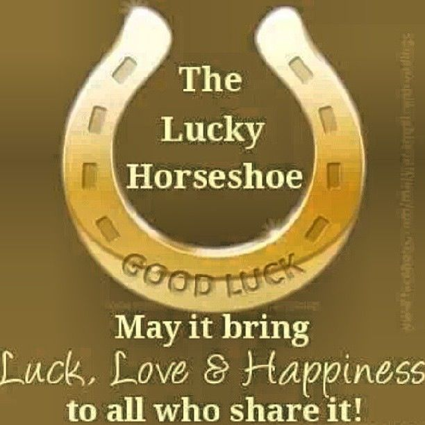 Good Luck Horseshoe Quotes Pinterest